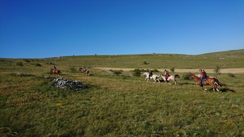 randonnee cheval cevennes auvergne 2018  (3)