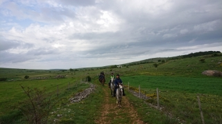 randonnee cheval cevennes 2018 (19)
