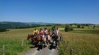 randonnee cheval cevennes auvergne 2018  (25)