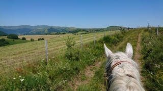 randonnee cheval cevennes auvergne 2018  (27)