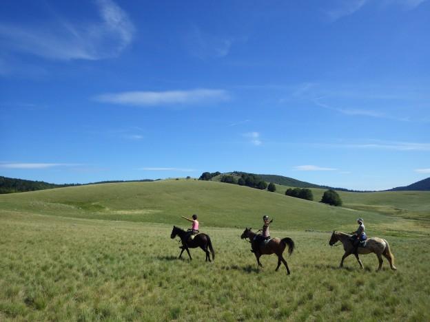 randonnée à cheval cévennes