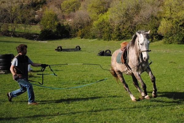 ludovic, guide à cheval pour cavalquinta