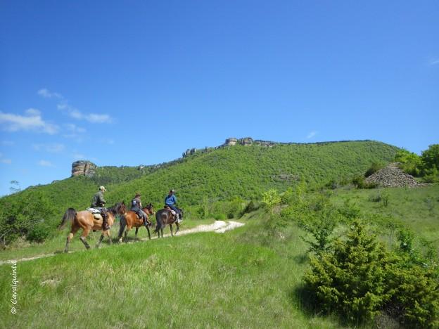 Randonnées à cheval dans les Cévennes