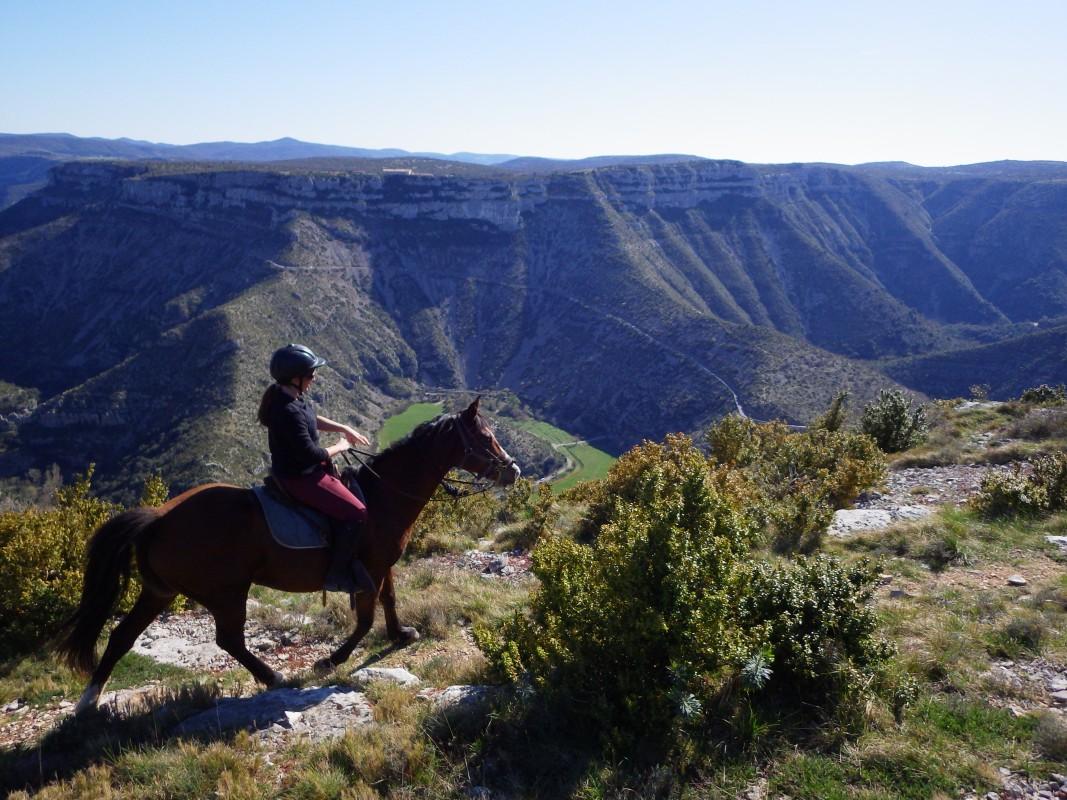 balade à cheval vue sur le cique de navacelles