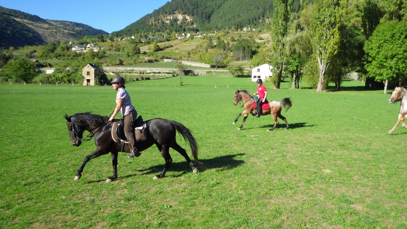 rando cheval cévennes