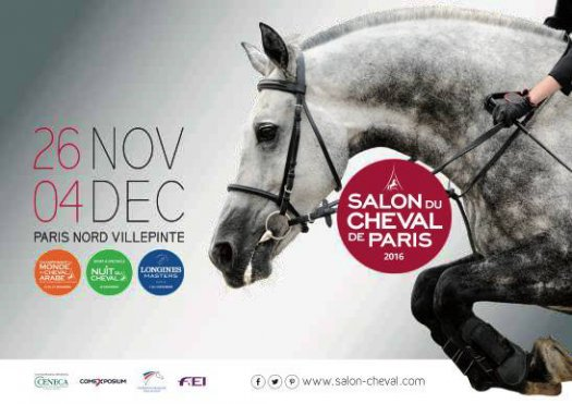 bigsalon_cheval_dec16