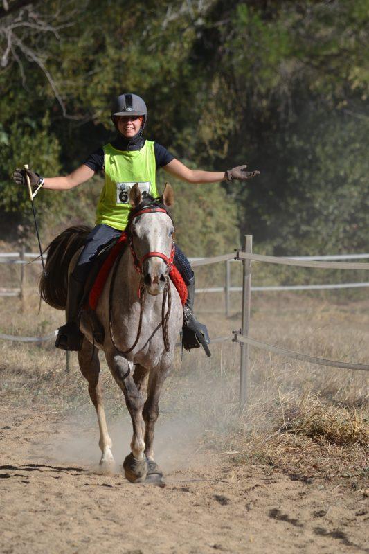 endurance jeunes chevaux elevage del quinta cavalquinta. Black Bedroom Furniture Sets. Home Design Ideas