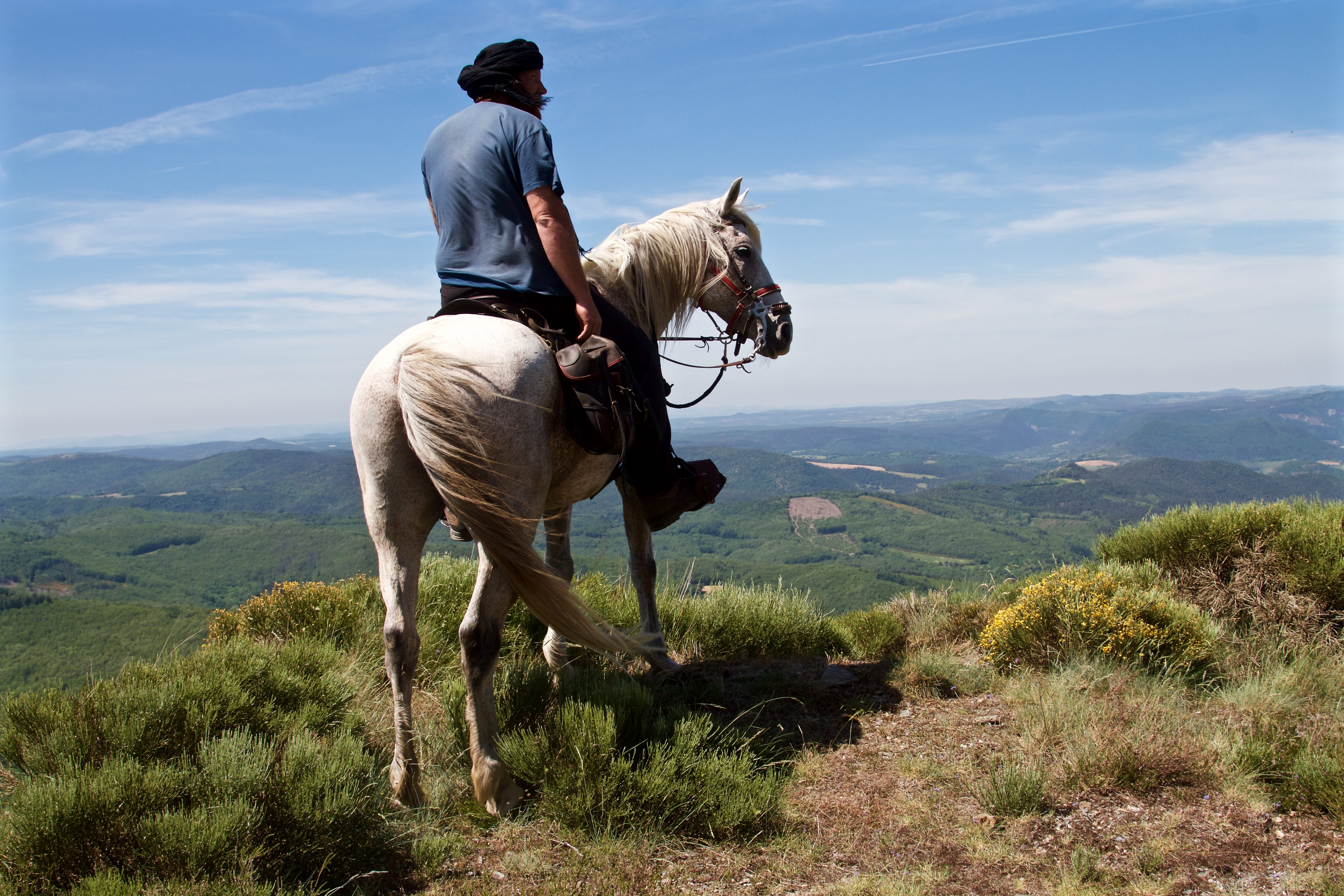 rando cheval cevennes