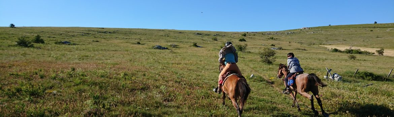 randonnee cheval cevennes