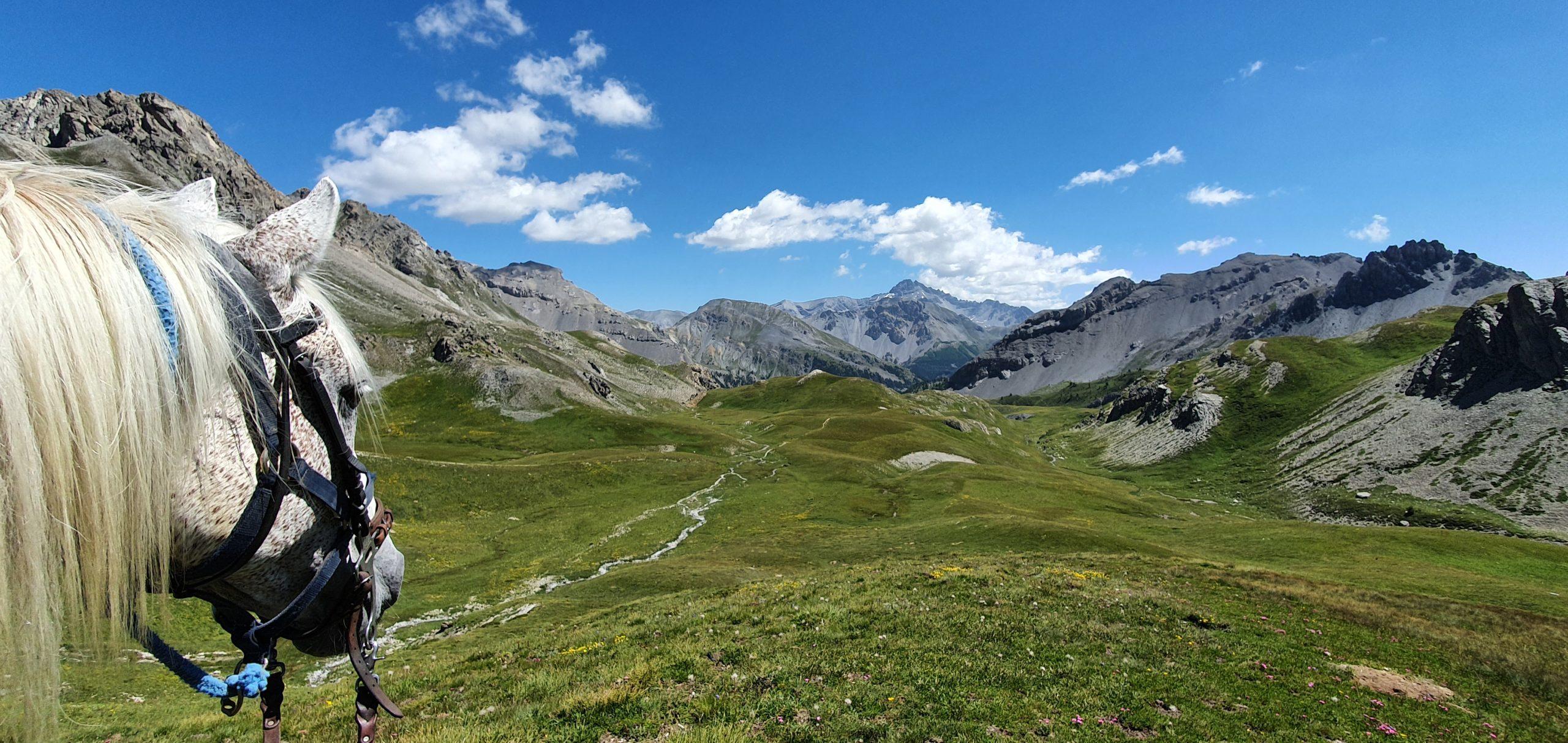 randonnée cheval alpes